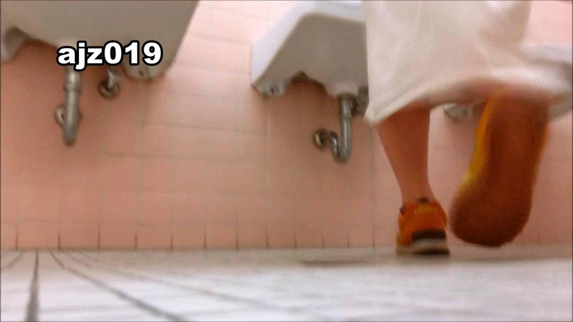某有名大学女性洗面所 vol.19 和式  109PICs 28