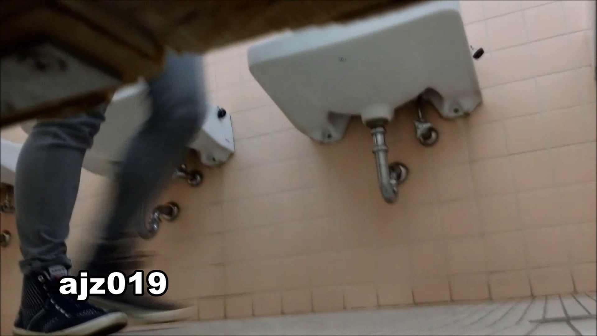某有名大学女性洗面所 vol.19 和式  109PICs 32