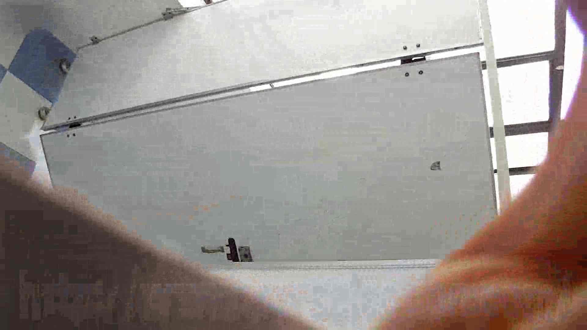 なんだこれ!! Vol.08 遂に美女登場!! OLエロ画像 隠し撮りオマンコ動画紹介 94PICs 29