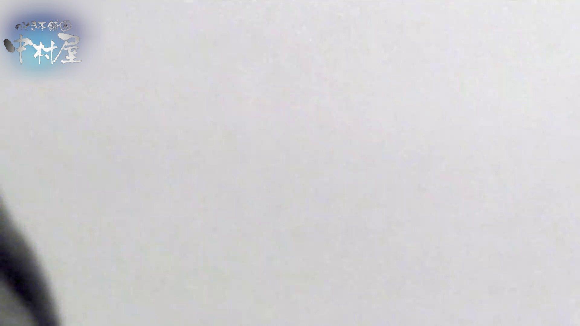 乙女集まる!ショッピングモール潜入撮vol.03 トイレ  87PICs 60