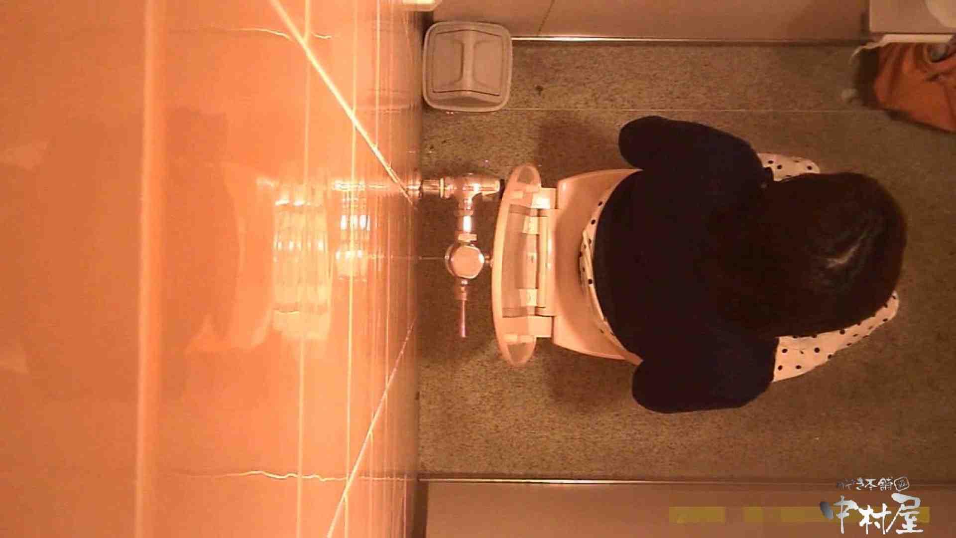 初盗撮!女盗撮師カレンさんの 潜入!女子トイレ盗撮!Vol.3 女子トイレ 覗きおまんこ画像 110PICs 23