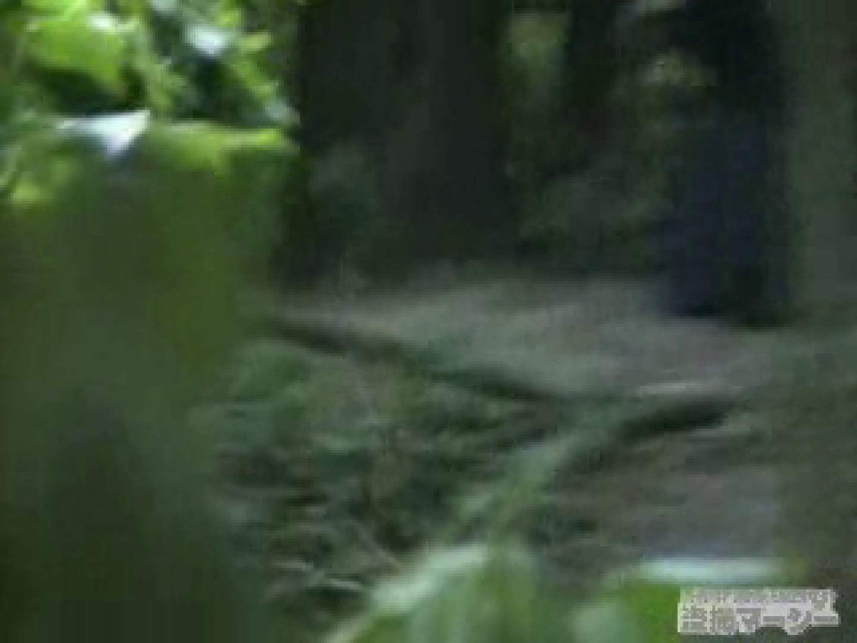 衝撃!ウエデイングドレスを着て野外発射!  盗撮 覗きおまんこ画像 96PICs 30