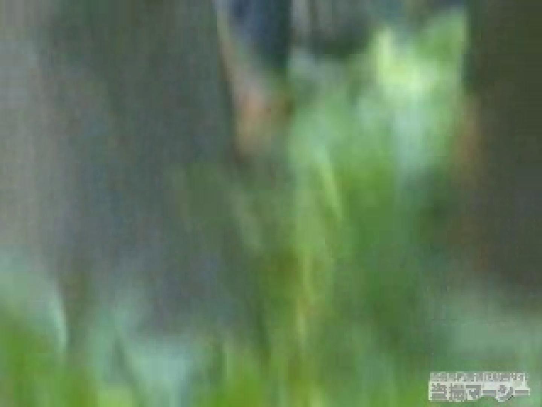 衝撃!ウエデイングドレスを着て野外発射!  黄金水 覗きおまんこ画像 96PICs 35