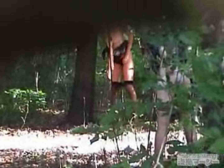 衝撃!ウエデイングドレスを着て野外発射!  盗撮 覗きおまんこ画像 96PICs 94