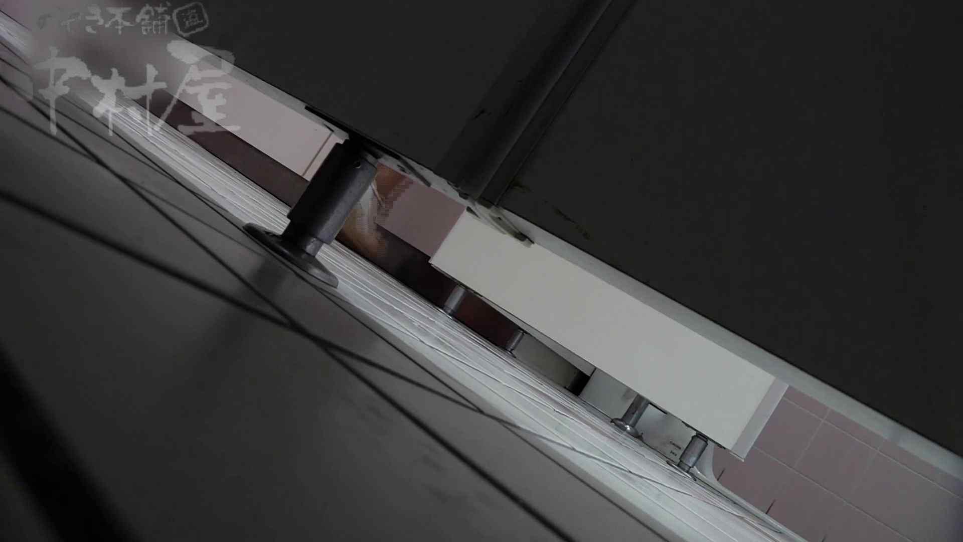 美しい日本の未来 No.33 黒パンをやっと下げる? 女子トイレ のぞきおめこ無修正画像 109PICs 5